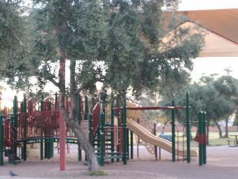 Los Olivos Park