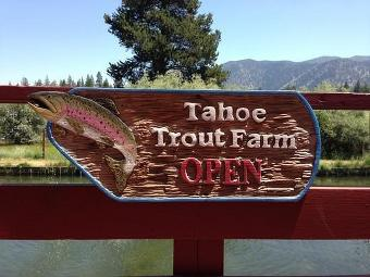 Tahoe Trout Farm